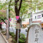+Life編集部、サ高住のある街<桜台・江古田>を歩く Vol.1