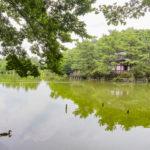 Villageリーシュ上石神井