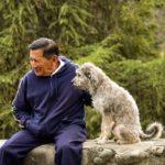 高齢者がペットを飼うときの4つの不安。支援団体はあるの?