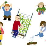 高齢者におすすめ「家庭菜園」動画3選、お家で野菜を育ててみませんか