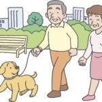 【シニアに人気のペット】愛犬の名前ランキング2020は「ココ」が10連覇!