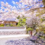 【デュアラーを目指す高齢者向け】東京都民が二拠点居住(二地域居住)したいエリアランキング