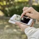 【スマホ認知症を防ごう】高齢者の脳トレや認知症対策におすすめなゲーム無料アプリ5選【2021年最新版】